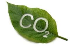 2014年欧州CO2平均排出量分析